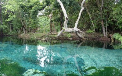 Vanuatu Blue Holes & Crystal Rivers – A Must Do Kayaking Experience